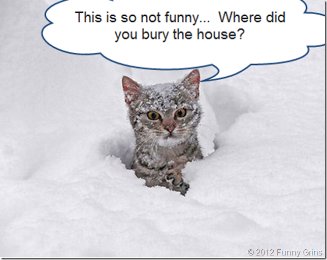 This is so not funny.  Where did you bury the house?
