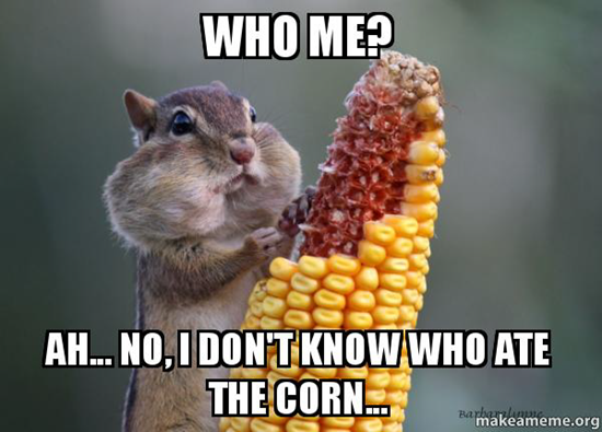 Who me? Ah, No, I don't know who ate the corn