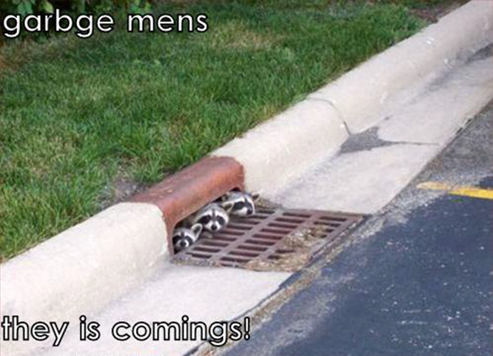 Garbage mens is coming