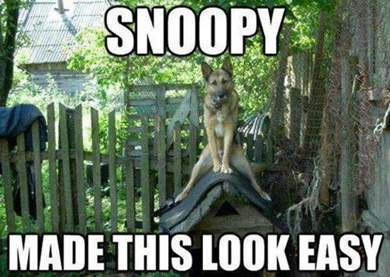 Snoopy made this look  easy