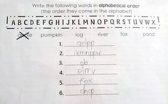 Write the following words in alphabetical order