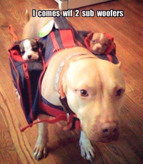 Killer sound system with two subwoofers