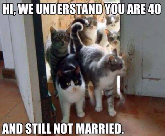 Hi, we understand you are 40 years old and still not married