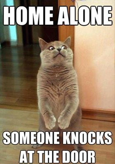 Home alone, someone knocks at the door…