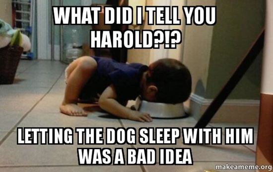 What did I tell you Harold?!?