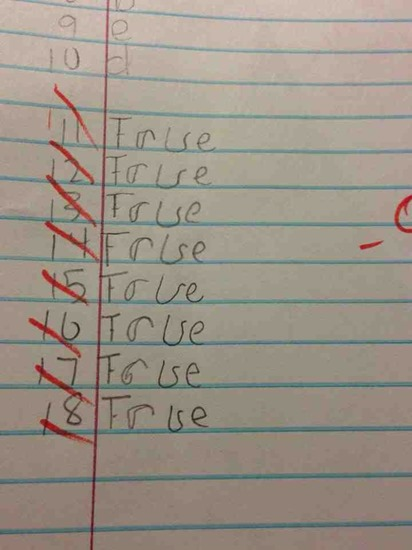 Good try - funny true false test answers