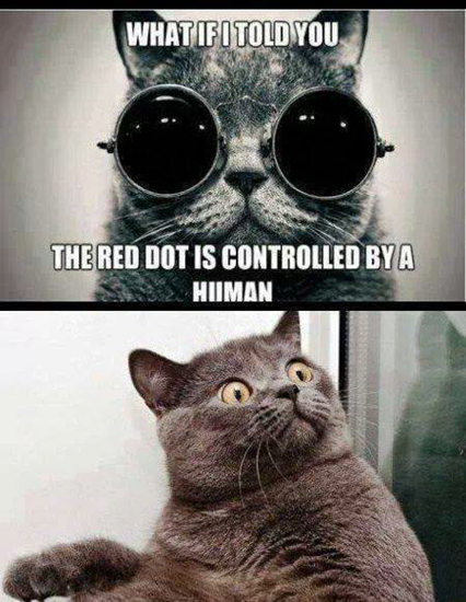 What if I told you the red dot was controlled by a human