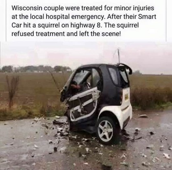 Couple treated for minor injuries after Smart Car destroyed by hitting squirrel